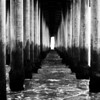 Under the Pier at Huntington Beach CA black and white