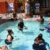 Underwater Photography Workshop in Palm Springs California