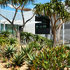 Succulent Gardening at the Newport Beach Library 4