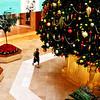 Christmas at South Coast Plaza in Costa Mesa CA