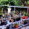 Home Garden Work Area in Orange County California