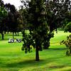 Mesa Verde Country Club in Costa Mesa California in May 2