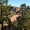 Enjoy the Scent of Pine Trees at the Grand Canyon in Arizona